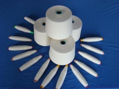 进口印度棉纱